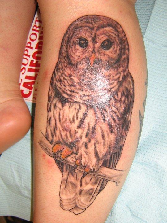 david california tattoo company